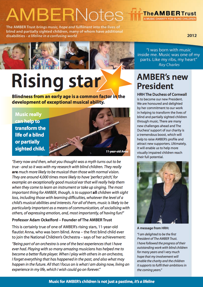 Amber Notes 2012